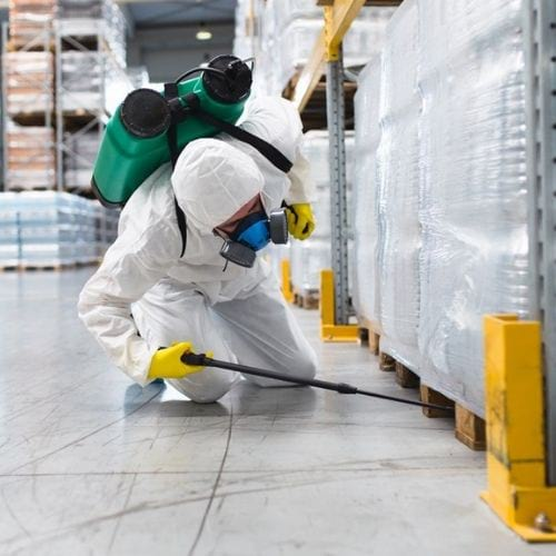 How does an exterminator work during a pandemic ?
